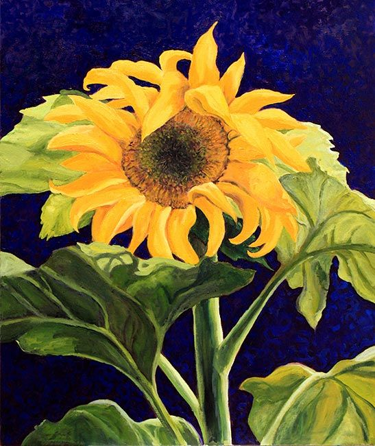 Ode to a Sunflower: Floral Oil Paintings for Sale